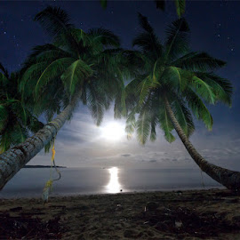 Moonlight by Bar Artzi - Landscapes Starscapes ( palm, andaman, moon, tree, stars, sea, islands, india, beach, landscape )