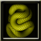 Animated Snake LWP icon