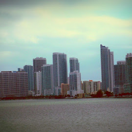 Miami Memories by Cecilia Sterling - City,  Street & Park  Skylines
