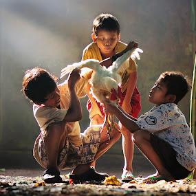 Chicken Reseacher by Yoga Pratama - Babies & Children Children Candids