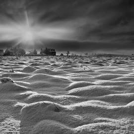 Snow Fields by Ceri Jones - Landscapes Prairies, Meadows & Fields ( winter, snow, mounds, sunrise, frozen, fields )