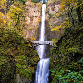 Multnomah Falls, Oregon by Chris Bartell - Landscapes Waterscapes ( water, oregon, color, green, waterfall, fall, landscape,  )