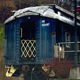 Old Train now a Tourist Attraction ! by Linda Blevins - Transportation Trains