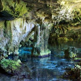 Cenote 2 eyes by Ydoya Rodriguez - Nature Up Close Water ( milestone, pure, stoneage, rocke, underwater, cenote,  )