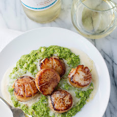 Seared Scallops with Beurre Blanc and Pesto Pea Puree