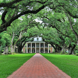 Plantation Home by Tony Austin - Buildings & Architecture Homes ( home, southern, oaks, trees, plantation, sidewalk )