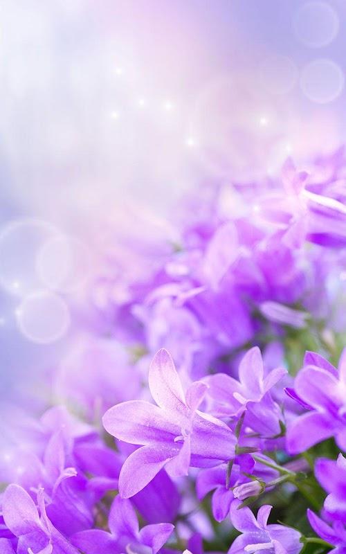 заставки на телефон цветы фон № 56187 бесплатно