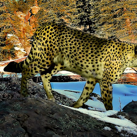 Felino en la foresta by Victor Pizzola - Digital Art Animals ( felino )