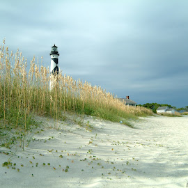 Cape Lookout by Ashley Whitford - Landscapes Beaches