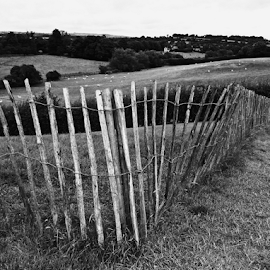 Fence by Deborah Russenberger - Buildings & Architecture Other Exteriors ( b&w )