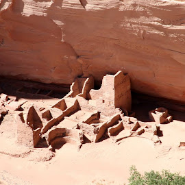 running antelope ruins, canyon de chelly national monument, az by Debbie Theobald - Landscapes Deserts (  )
