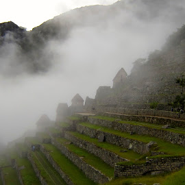 Historic Sanctuary of Machu Picchu by Kaoru Arai-Lewman - Buildings & Architecture Public & Historical ( peru, fog, machu picchu,  )