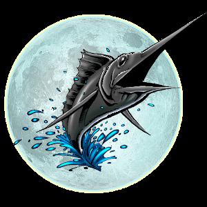 Cover art Big Night Fishing 3D