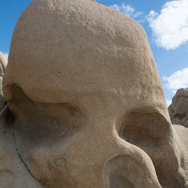 by Randy Sampson - Nature Up Close Rock & Stone