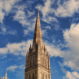 Salisbury Cathedral by Oscar Alvarez - Buildings & Architecture Places of Worship ( salisbury, england, cathedral )