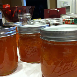 1 batch of Apricot jam done! by Charlotte Sybil - Food & Drink Cooking & Baking (  )