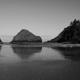 Parrot Rocks in Oregon by Waynette  Townsend - Landscapes Beaches ( oregon, florence, park, black and white, devils elbow, sea, ocean, seascape, beach, coast, parrot rocks,  )