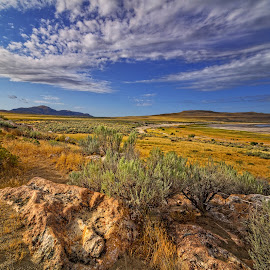Antelope Island 02 by Dave Sansom - Landscapes Prairies, Meadows & Fields ( dave sansom, utah, state park, antelope island, beautiful sky, rocks, prairie )
