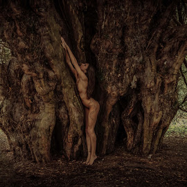 Silver Wood Nymph by Porlus At Maelstrom - Nudes & Boudoir Artistic Nude ( nude, nature, wodland, naturist, beauty )