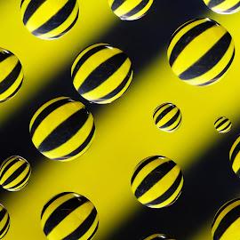 Black and Yellow stripes by Blaž Janežič - Abstract Macro ( macro, color, blaž janežič, glass, droplets )