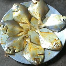 by Debraj Roy - Food & Drink Plated Food