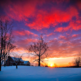 Sunset over Snowy Terrain by Nick Mateja - Landscapes Sunsets & Sunrises ( clouds, hill, sky, tree, sunset, snow )