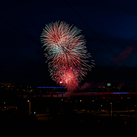 Firework by Joseph Law - News & Events Entertainment ( canada day, firework, city of edmonton, colorful lighting, celebration, entertainment )