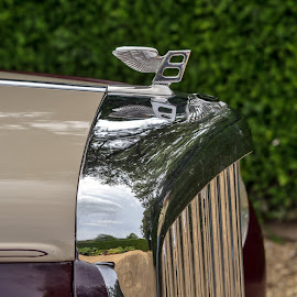 Vintage Bentley by Adele Southall - Transportation Automobiles (  )