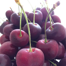 cherry by Mary Yeo - Food & Drink Fruits & Vegetables