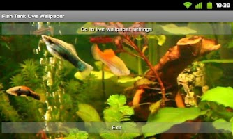 Screenshot of Fish Tank Live Wallpaper