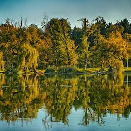 Symetry by Radu Eftimie - City,  Street & Park  City Parks ( bucharest, youth park, mirroring, lake, romania )