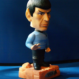 Reflecting on Spock by Karl Jones - Artistic Objects Toys