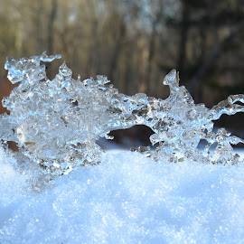 Aspetuk Ice by Erika  Kiley - Novices Only Objects & Still Life ( winter, ice, snow, snowflake, crystal )