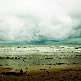 ilusion by Samrat Sam - Landscapes Beaches