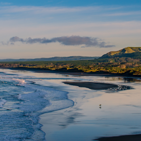 Muriwai Beach by Mahdi Hussainmiya - Landscapes Beaches ( reflection, surfer, waves, blue skies, landscape, golden hour )