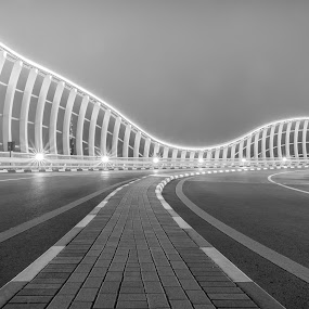 The way by Walid Ahmad - Black & White Buildings & Architecture ( dubai, nikon, photography )