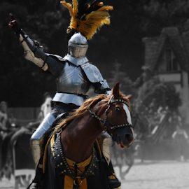 Jousting Knight Winner by Julie Berglund - Sports & Fitness Other Sports ( horses, knights, jousting, horse, medieval, knight, joust,  )