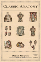 Screenshot of Classic Anatomy