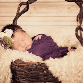 Grapevine by Tiffany Hawke - Babies & Children Babies ( wrap, purple, basket, newborn )