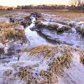 Winter on the Salt Marsh by David Stone - Landscapes Prairies, Meadows & Fields ( water, ipswich, ice, snow, sunrise, salt marsh, seacoast, winter, cold )