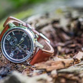 Nature O' Clock by Gebe Alpar-Allpee - Artistic Objects Clothing & Accessories ( nature, 2014, watch, tommy, shot, design, object )
