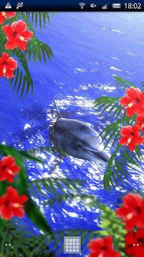 Tropical Ocean-Bluesky