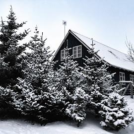 Snow has attraction  by Siffa Jónasdóttir - Instagram & Mobile iPhone ( snow iceland )