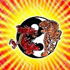 Tiger vs Dragon theme 480x800 icon