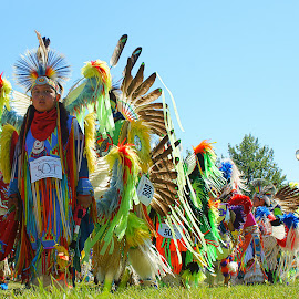 Walk to Get Ready by Dustin White - People Musicians & Entertainers ( colorful, festival, dance, powwow, native american )