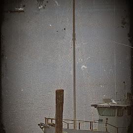 docked boat by Lacey Murphy - Transportation Boats ( boat )