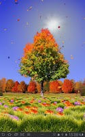 Screenshot of Autumn Trees Free