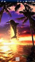Screenshot of Dolphin Sunrise Trial