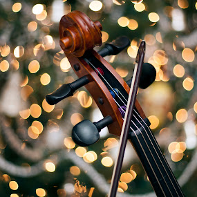Songs of joy by Edward Kreis - Artistic Objects Musical Instruments ( lift our hearts, music, holiday, rememberance, musical, songs, christmas, instrument, object, cello, seasons greetings, celebrate )