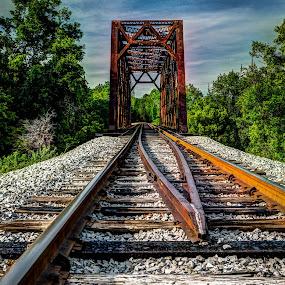 by Tony Cox - Transportation Railway Tracks (  )